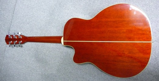 Fender FR-50CE SB 2