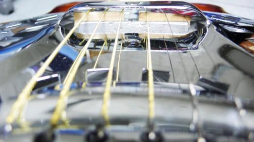 Fender FR-50CE SB 5