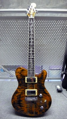 Kraken Custom Guitars 1